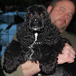 """Whoopi"", a Black-coloured